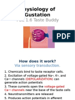 Physiology of Gustation