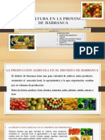 Frutas Producidads en Barranca