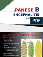 Japanese B Encephalitis