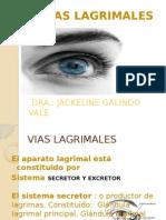 5.- Vias Lagrimales