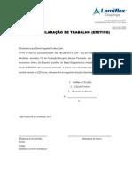 Declaração de EFETIVO.doc