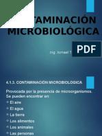4.1.3 Contaminacion Microbiologica