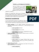 Sectores de La Actividad Económica