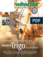 EL PRODUCTOR REVISTA - ABRIL 2013 - PARAGUAY - PORTALGUARANI