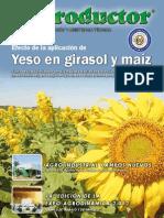 EL PRODUCTOR REVISTA - DICIEMBRE 2012 - PARAGUAY - PORTALGUARANI