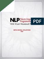 NLP Meta Model Violations