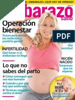 Embarazo Sano Junio 15