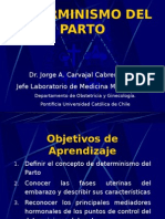 Determinismo Del Parto