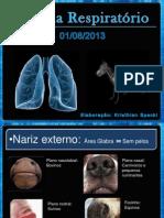 Slides Sobre Sistema Respiratório, Medicina Veterinária. Elaborado Por Kristhian Felipe Spacki