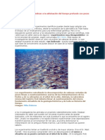 Unos científicos se dedican a la adivinación del tiempo profundo con peces muertos