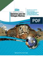 Adaptación al Cambio Climático - Opciones para las Tortugas Marinas - Fish & Drews 2009
