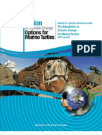 Adaptation to Climate Change-Options for Marine Turtles - Fish & Drews 2009