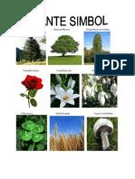 Plante Simbol