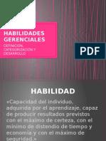 Habilidades Gerenciales Fundamentos 2014-3