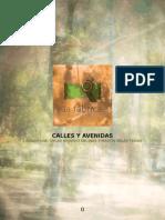 Archivo Proyecto Público Calles y Avenidas Final 130425