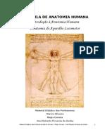 Apostila I - Introdução a Anatomia e Aparelho Locomotor.pdf