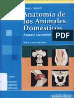 Anatomia de Los Animales Domesticos -Tomo 1 - Konig