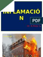 Fisiopatologia Inflamacion Pinto Enf