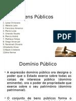 Resumo de Bens Publicos