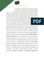 """""""Amenazas Del Bosque de Protección Altomayo"""""""