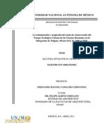 099066897.pdf