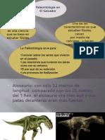 Paleontologia Estudio basico
