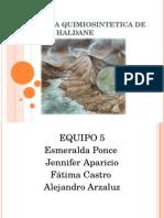 EXPO_TEORIA_QUIMIOSINTETICA_DE_OPARIN_Y_HALDANE2.ppt