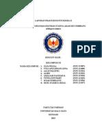 laporan-fitokim-2