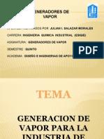 Generadores de Vapor11241