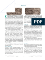 piedrolos.pdf