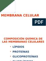 1.Memb.cel.Estruct.2014 (1)