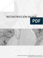 Reconstrucción Vaginal. Ultima Version