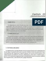 Capítulo III Organización