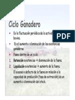 Ciclo Ganadero