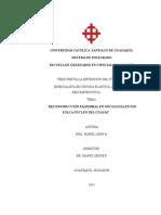 Reconstruccion Palpebral en Oncologia Ion Solca.guayas 2007-2010 Xxx