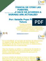 importanciadecitarfuentesynormasapa-111203131103-phpapp02