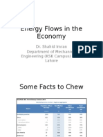 Energy Flows in the Economy