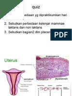 reproduksi wanita2