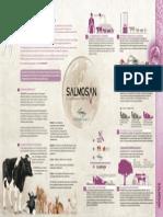 folleto_salmosan