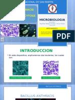 3° MICROBIOLOGIA-L. MONOCYTOGENES Y B. ANTHRACIS