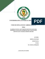 Diente de Leon Proyecto Pis 11-02-2015