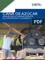 CANA DE AZUCAR - Setiembre 2011 - USAID - MAG - PARAGUAY - PORTALGUARANI