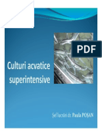 Culturi acvatice superintensive