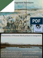 Kiviat Phragmites Management 051915