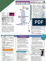 Folleto Sistema Endocrino