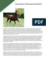 """Curso Seleccion, Entrenamiento Y Alimentacion Del Equino Deportivo"""""""