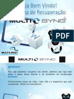 Manual MultiSync