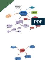 Brain Map Penurunan Kesadaran