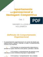 1_-_Comportamento_Organizacional_e_Vantagem_Competitiva[1].ppt