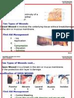 Mod 6 Soft Tissue Injuries